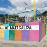 ニカラグア「エル・ケツァールJAVA」販売開始のお知らせ。